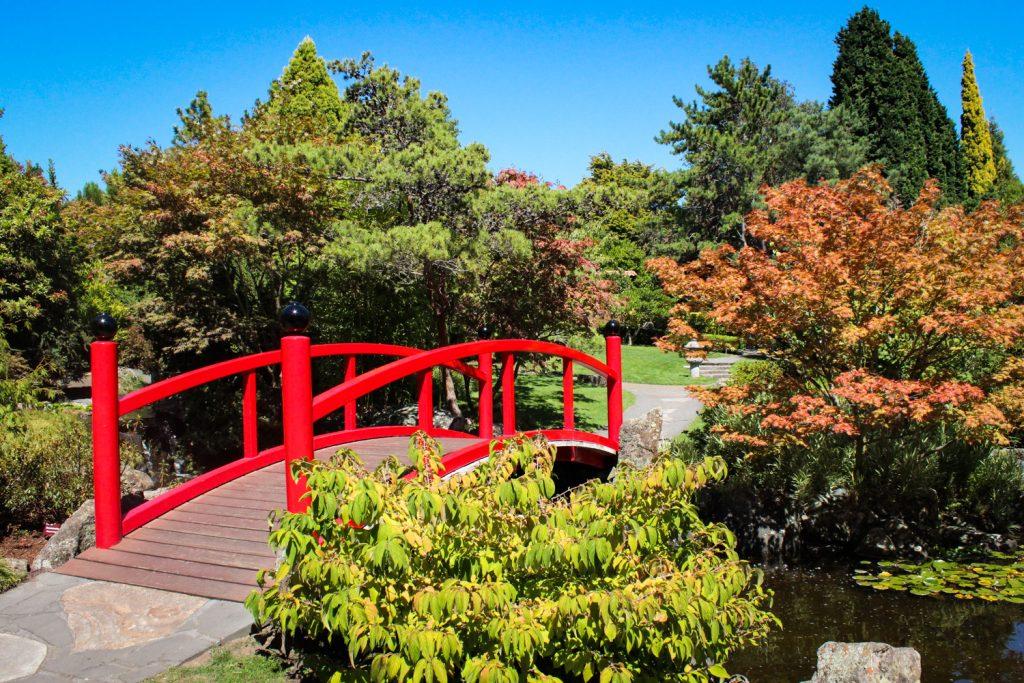 Royal Botanical Gardens in Hobart