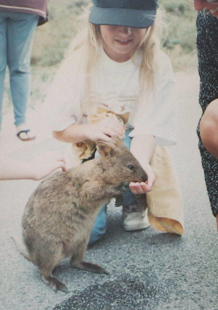 Feeding a quokka on Rottnest Island in Western Australia