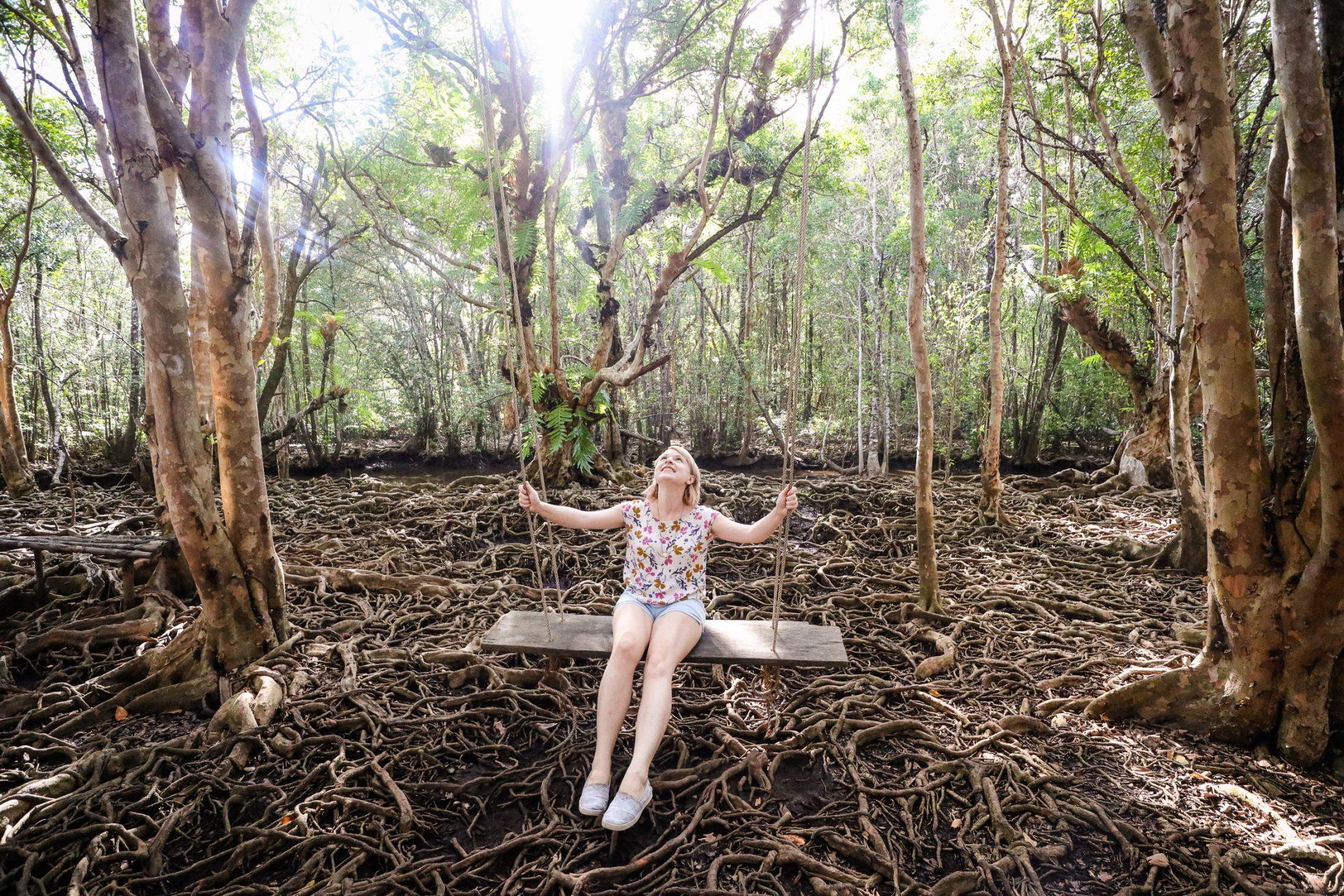 Mangrove forest, eastern Thailand