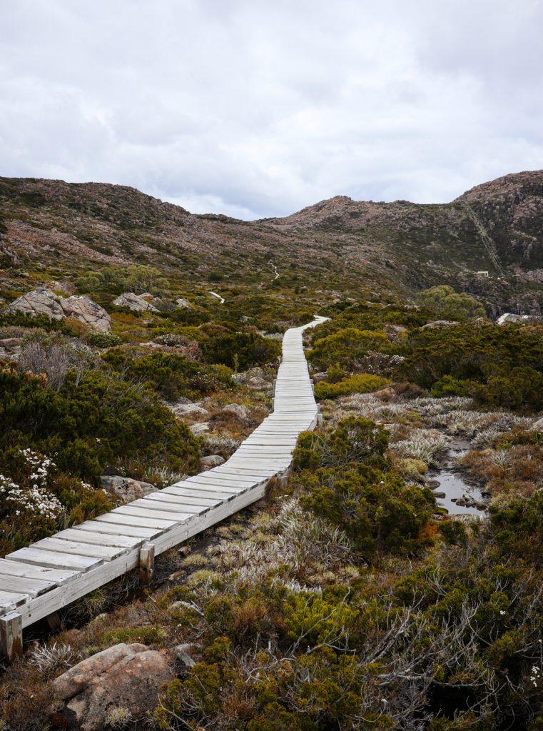 Tarn Shelf track at Mt. Field National Park in Tasmania