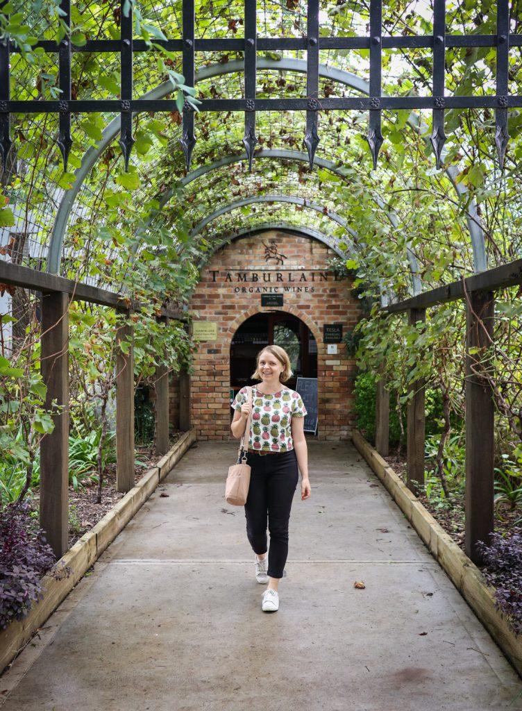 Tamburlaine Organic Wines in the Hunter Valley Wine Region, NSW